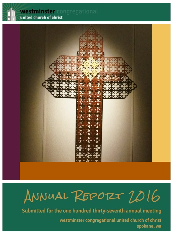 2016 Ann Report cover